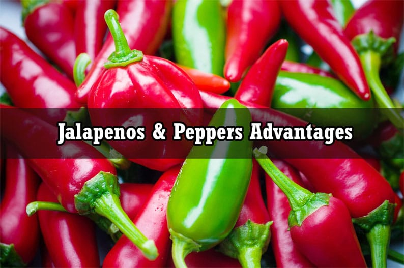 Jalapeno Peppers Nutritional Benefits and Super Factors